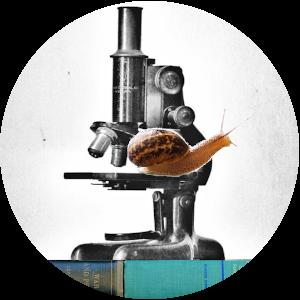 slow science in belgium